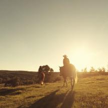 couchez-soleil-cheval